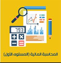 برنامج المحاسبة المالية ( المستوى الأول )